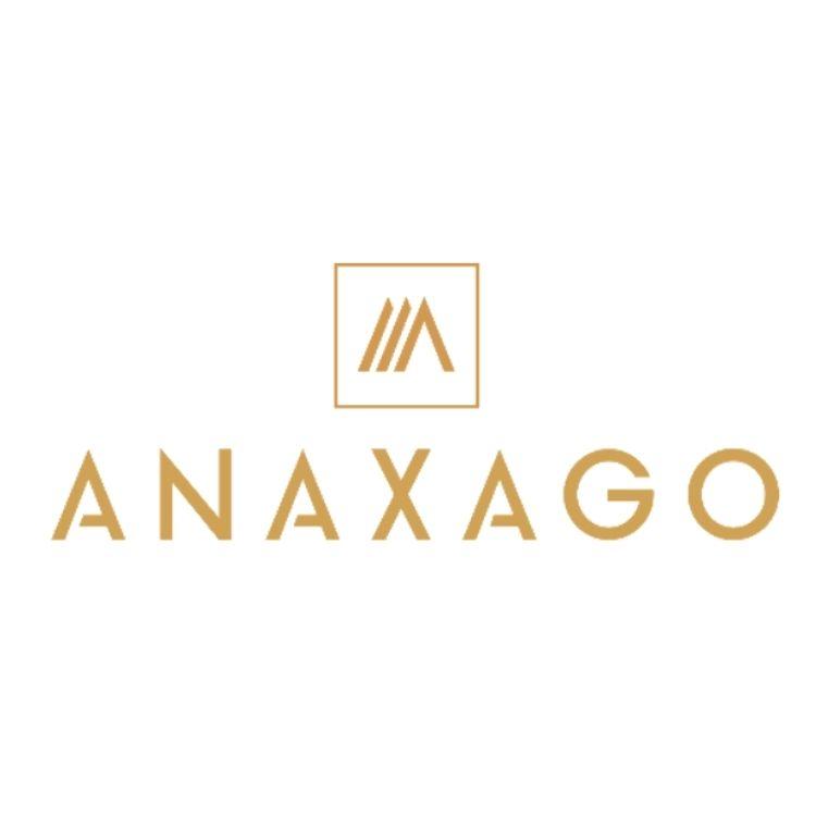 Anaxago partner